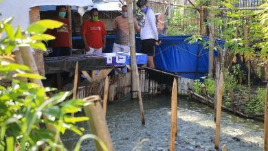 Photo of Ganjar Sambangi Warga Genuk yang Kolaborasi Bersama Eks Napiter Budidaya Lele