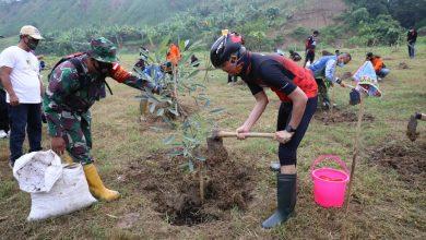 Photo of Ganjar Pimpin Tanam Ratusan Pohon di Lahan Kritis Demak