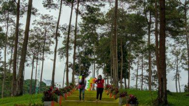 Photo of Bumi Perkemahan Alastuwo, Destinasi Wisata Yang Menawarkan Keindahan Dan Kesejukan di Kabupaten Magetan