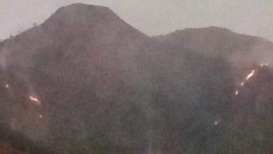 Photo of Gunung Andong Terbakar, Menghanguskan Lahan Seluas 9 Hektar